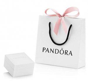 Estuche y bolsa de regalo¡
